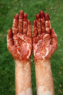 Indian woman hands with henna against green
