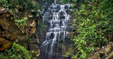 "Картина, постер, плакат, фотообои ""водопады тропических лесов "", артикул 65993211"