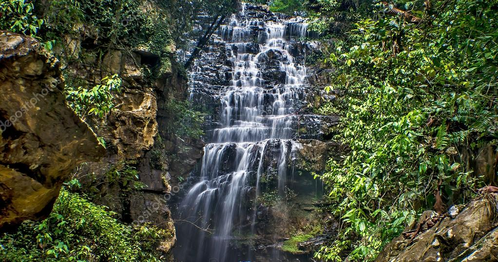 Rainforests waterfalls