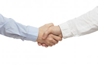 Successful business people handshaking