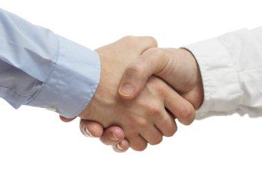 Successful business people handshaking