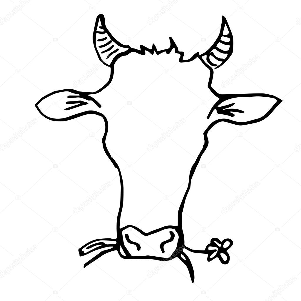 Line Drawing Cow Face : Cow head hand drawing — stock vector vectorielle