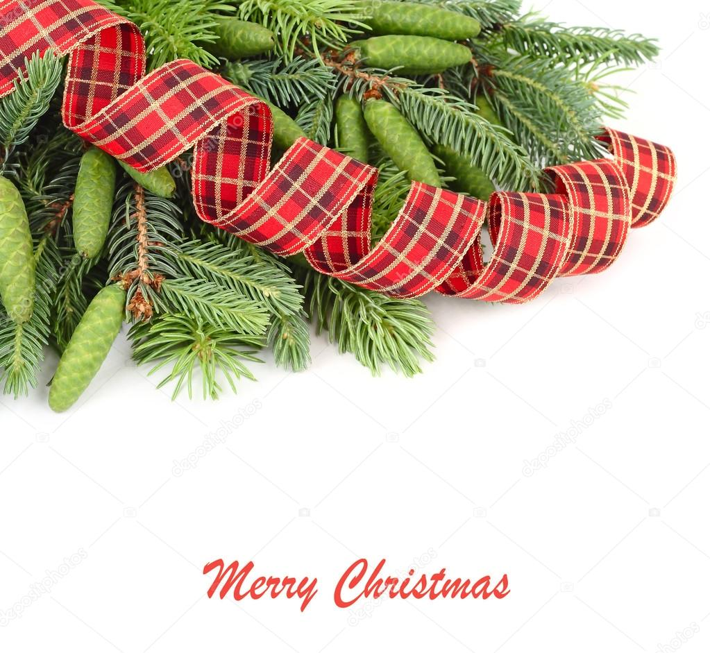 Branches of a Christmas tree with cones and a spiral checkered tape on a white background. A Christmas background with a place for the text.