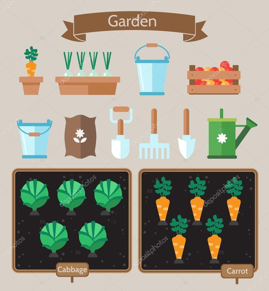 Vegetable garden planner flat design.Beds with cabbage, carrots.