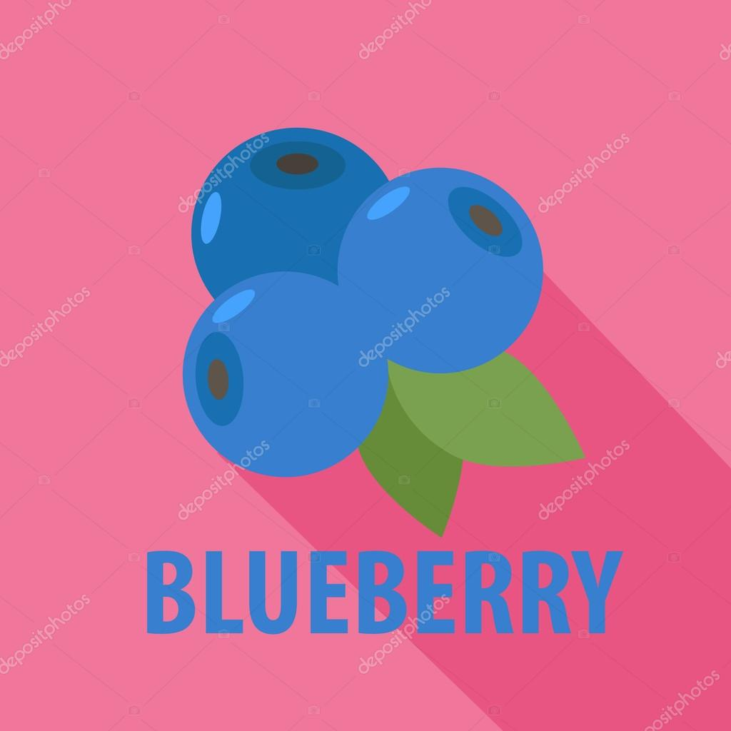 Blueberry icon in flat design with long shadows