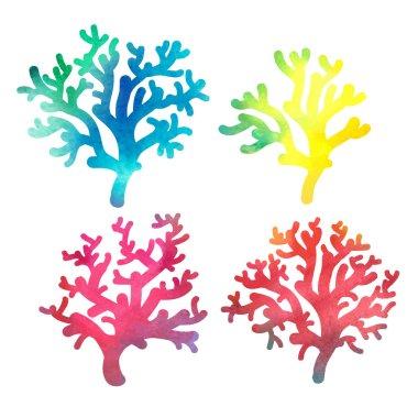 Decorative watercolor coral