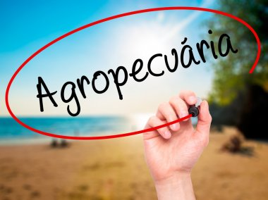 Man Hand writing Agropecuaria (Agriculture in Portuguese) with b