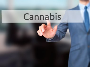 Cannabis -  Businessman click on virtual touchscreen.