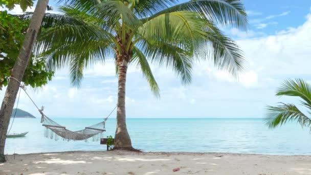 houpací síť a palm stromy na pláži