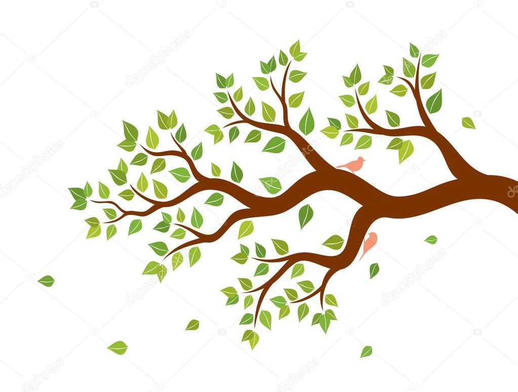 Arbol Con Ramas Animado: Vektorové Ilustrace Větve Stromu Se Zelenými Listy A