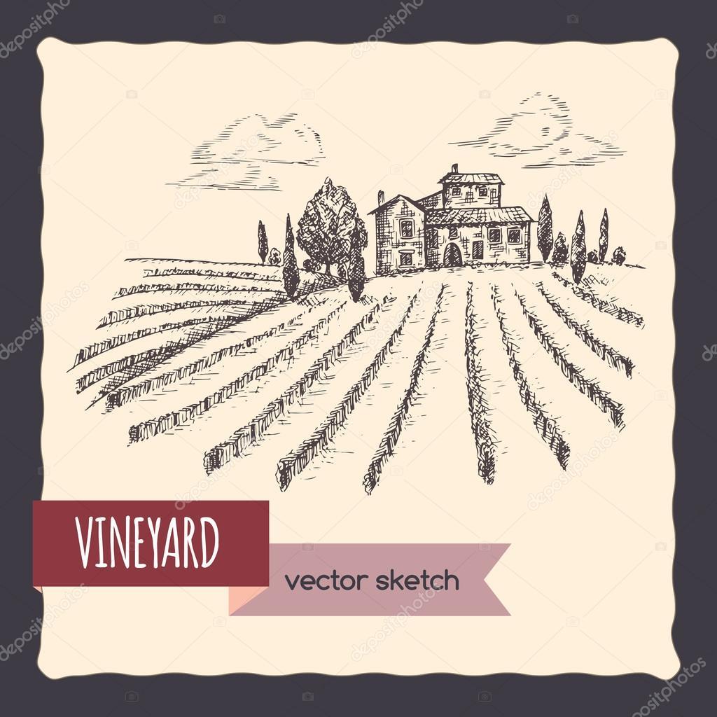 Vineyard and cottage landscape hand drawn vector sketch.