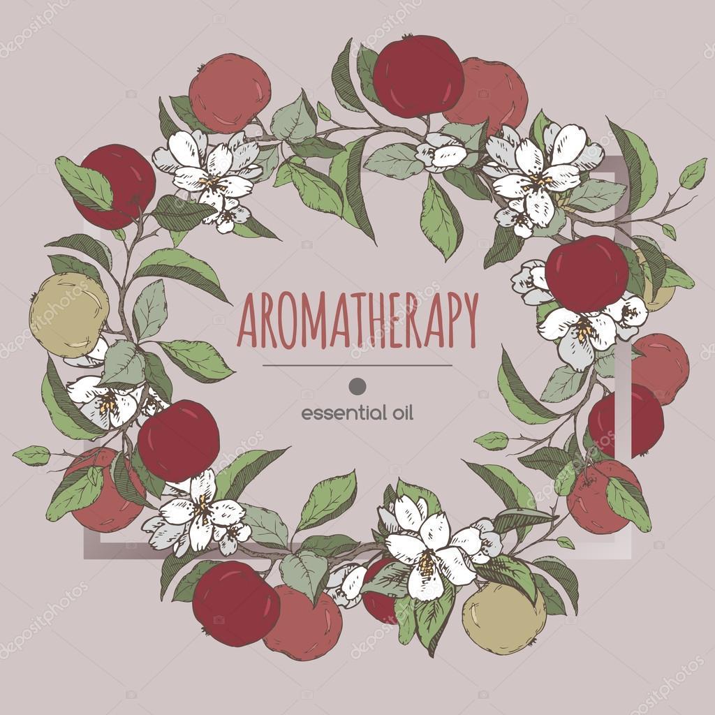 Eleganten Rahmen Vorlage mit Farbe Apfel und Jasmin Blumen Skizze ...