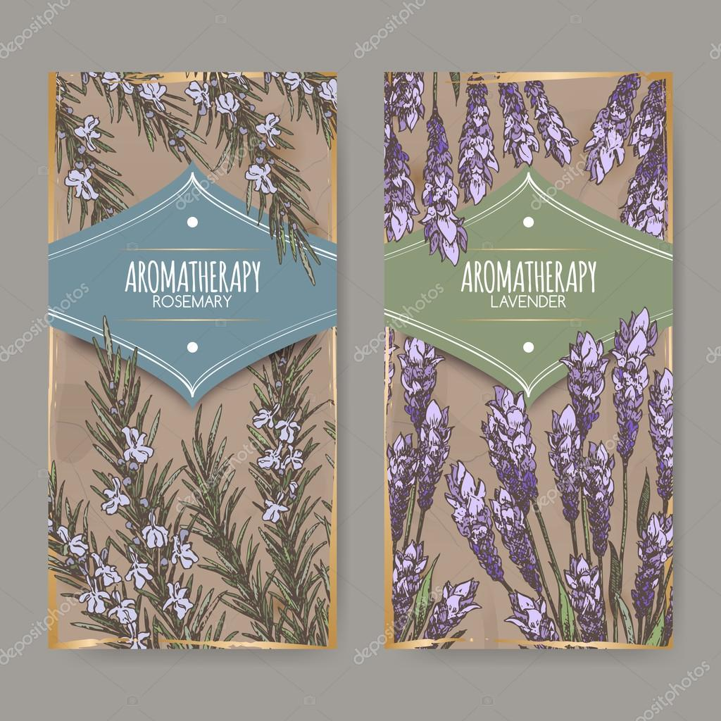 Two labels with lavender and rosemary color sketch.