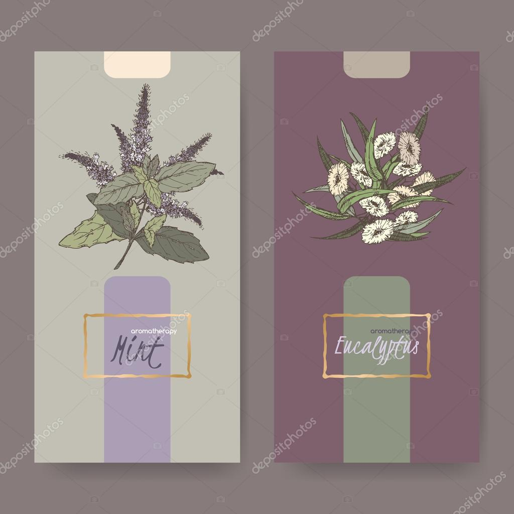 Two elegant labels with peppermint and eucalyptus bouquet color sketch.