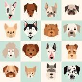 Fotografie Reihe von niedlichen Hunde icons