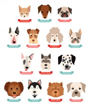 Dog breeds collection