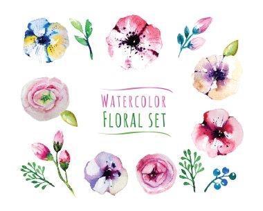 Watercolor design illustration of floral elements set stock vector