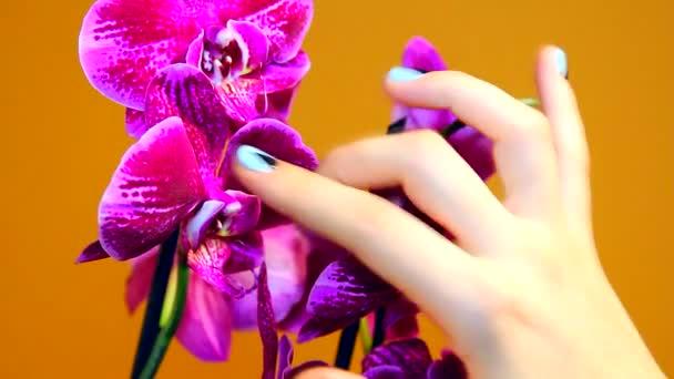 manikůra na ženské ruce s orchidejí