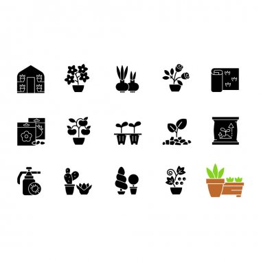 Gardening store categories black glyph icons set on white space. Pesticides for protecting plants from insects. Flower bulbs for spreading plants. Silhouette symbols. Vector isolated illustration icon