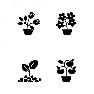 Gardening store categories black glyph icons set on white space. Flowering tree shrubs. Growing natural foods in home garden. Gardening hobby. Silhouette symbols. Vector isolated illustration icon