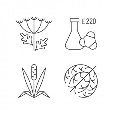 Allergens linear icons set. Queen Annes lace. Chemical sulphites. Cause of allergic reaction. Customizable thin line contour symbols. Isolated vector outline illustrations. Editable stroke icon