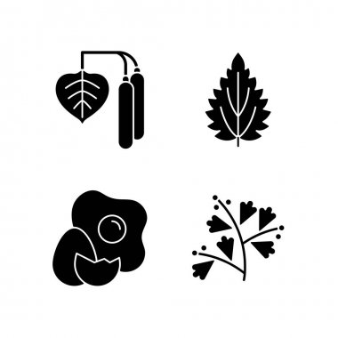Intolerance for allergen black glyph icons set on white space. Birch pollen. Nettle leaf. Cracked egg. Growing sagebrush. Cause of allergic reaction. Silhouette symbols. Vector isolated illustration icon