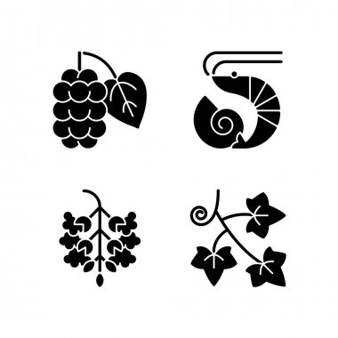 Seasonal allergen causes black glyph icons set on white space. Mulberry on branch. Crustacean and mollusc. Poplar tree pollen. English ivy. Silhouette symbols. Vector isolated illustration icon