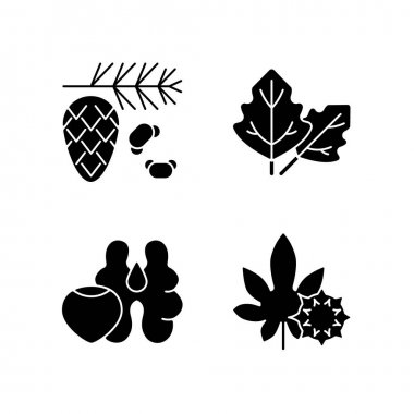 Cause of allergic reaction black glyph icons set on white space. Cedar and pine tree pollen. Lambs quarters. Tree nuts. Castor bean. Silhouette symbols. Vector isolated illustration icon
