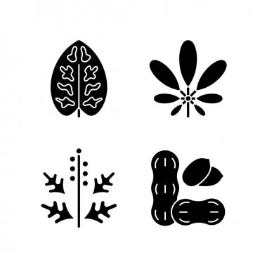 Reason for allergy black glyph icons set on white space. Dieffenbachia, schefflera. Ragweed pollen. Allergen from peanuts. Cause of allergic reaction.Silhouette symbols. Vector isolated illustration icon
