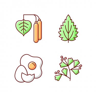Intolerance for allergen RGB color icons set. Birch pollen. Nettle leaf. Cracked egg. Growing sagebrush. Cause of allergic reaction. Reason for allergy. Isolated vector illustrations icon