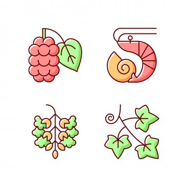 Seasonal allergen causes RGB color icons set. Mulberry on branch. Crustacean and mollusc. Poplar tree pollen. English ivy. Reason of allergic reaction and intolerance. Isolated vector illustrations icon
