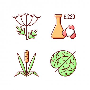 Allergens RGB color icons set. Queen Annes lace. Chemical sulphites. Dry tumbleweed. Timothy grass. Cause of allergic reaction and intolerance. Isolated vector illustrations icon