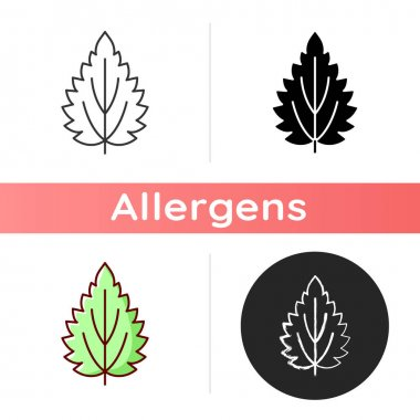 Nettle icon. Alternative medicine. Herbal ingredient for homeopathy. Common toxic allergen. Seasonal allergy for plant. Linear black and RGB color styles. Isolated vector illustrations icon