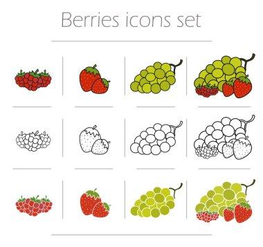 Berries, food icons set