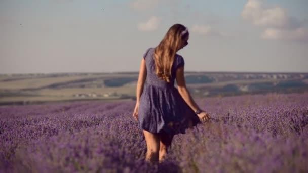 Dívka chodí v poli levandule