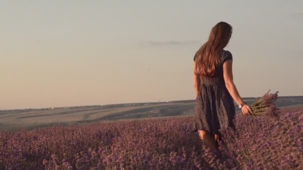 Slim girl in a sundress with a bouquet of lavender is walking on the blossoming field of lavender