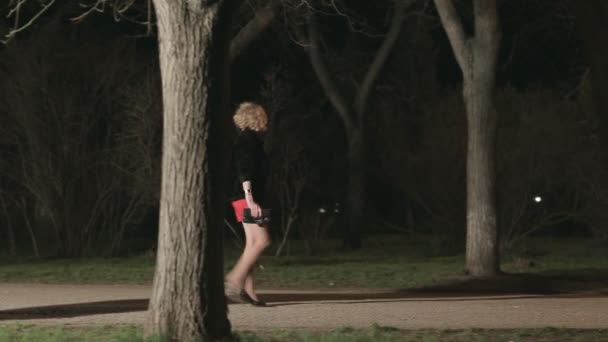 Beautiful girl in high heels walking along a dark park followed by a man