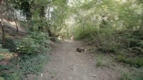 Atraktivní dívka v krátkých šortkách, pěší podél stezky