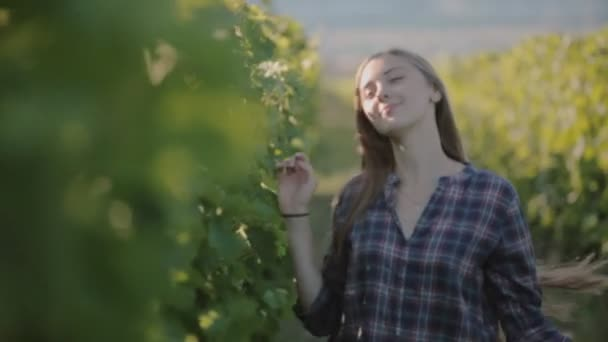 Beautiful girl with long hair walking along the rows of grape