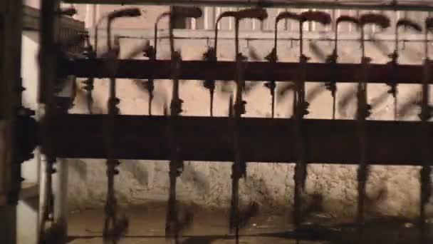 produkce organické kuřecí továrna a hnojiva