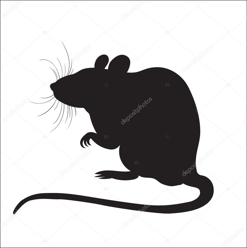 ネズミのシルエットの画像 \u2014 ストックベクター © Silbervogel