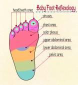 Fotografie Abbildung Reflexzonen für Babyfüße