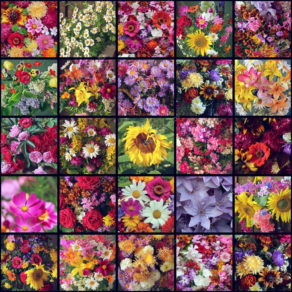 A collage of pictures of different flowers. Bouquets.