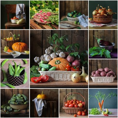 Collage from still lifes with vegetables. Vegetable background.