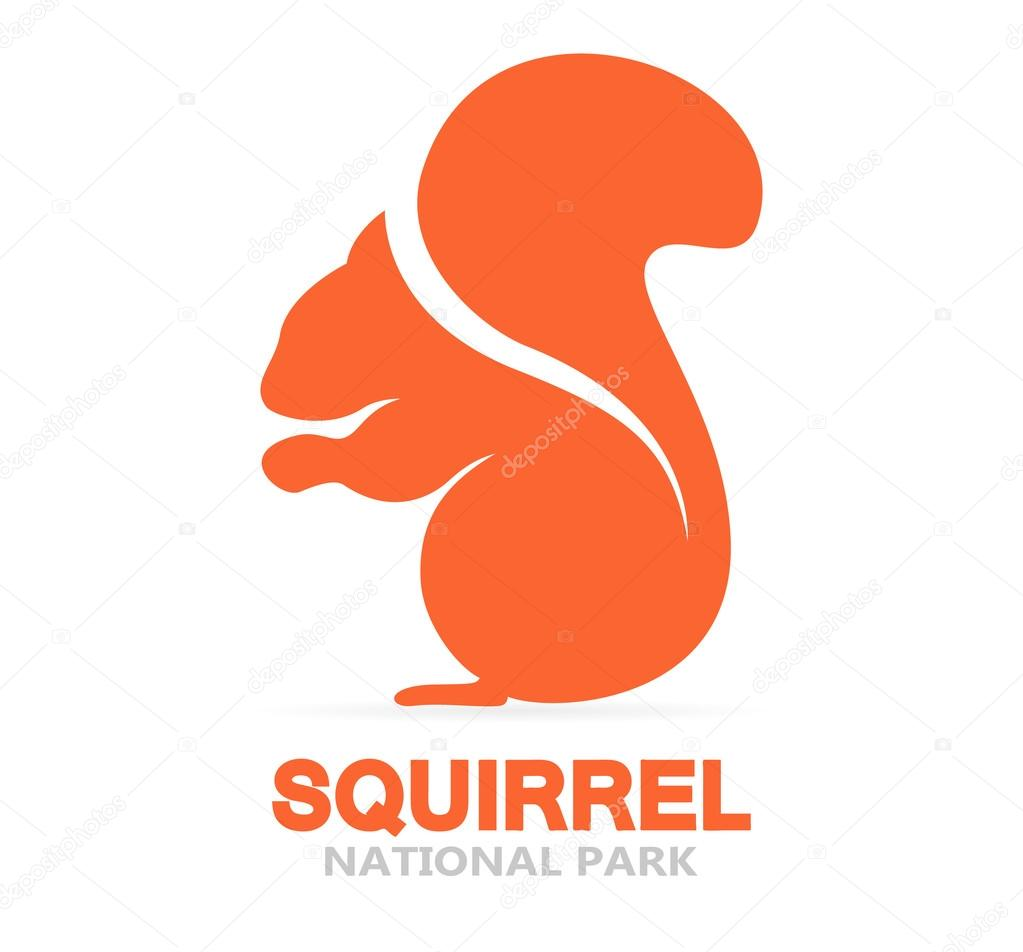 Vector squirrel logo