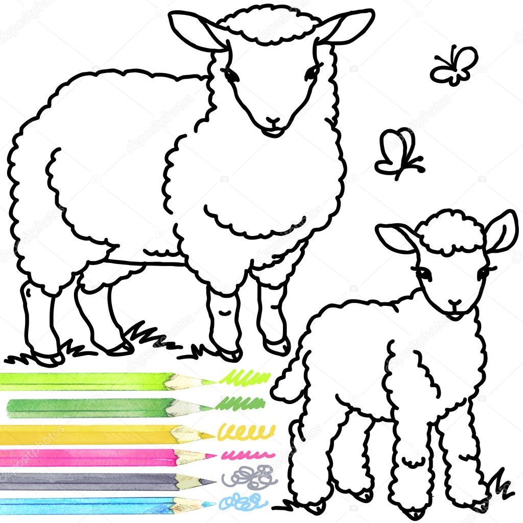 Sheep and lamb. Coloring book sheep. Sheep Outline drawing. Sheep ... for lamb drawing outline  584dqh
