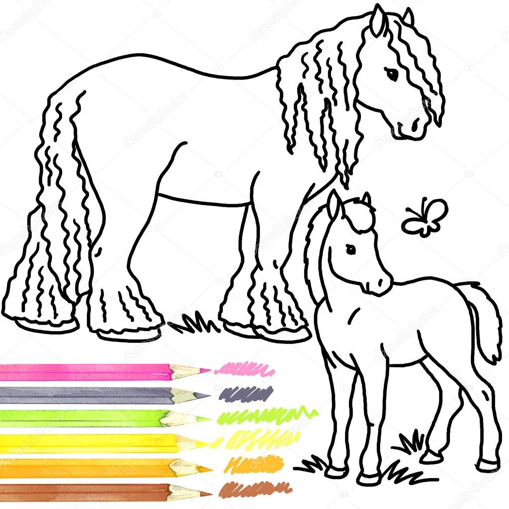Horse and foal. Coloring book Horse and foal. Horse and foal Outline ...