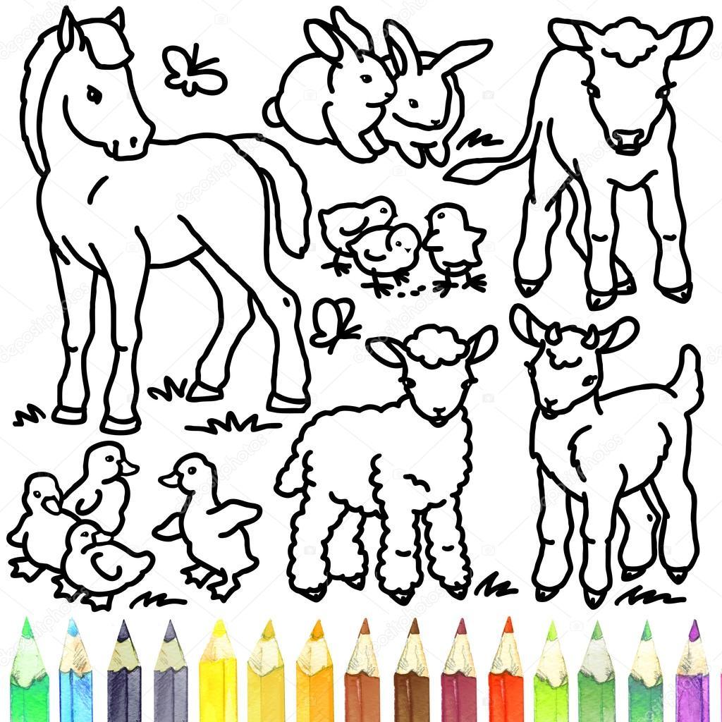 foal rabbit calf gosling lamb goat coloring book foal