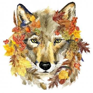 watercolor Wolf. Forest animal. Wolf. Autumn nature colorful leaves background, fruit, berries, mushrooms, yellow leaves, rose hips. watercolor illustration