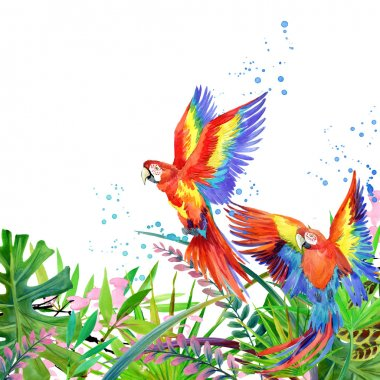 Tropical forest. Watercolor tropical forest. Parrot watercolor. Tropical plants watercolor background.